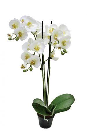 Orkidé i kruka, 3-stängel, vit, konstgjord-0