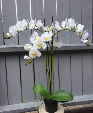 Orkidé i kruka, 3-stängel, vit, konstgjord-5226