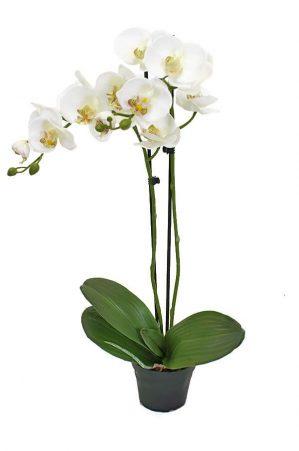 Orkidé i kruka, 2-stängel, vit, konstgjord-4614