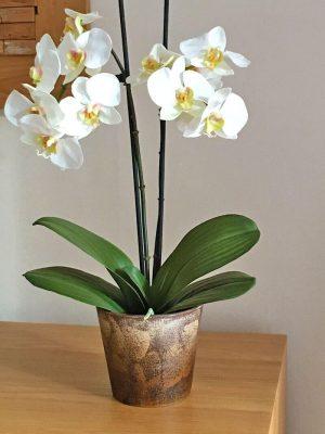 Orkidé i kruka, 2-stängel vit, konstgjord-0