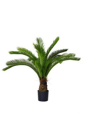 Cykas palm, konstgjord-4891
