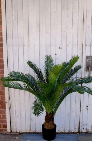 Cykas palm, konstgjord-4892