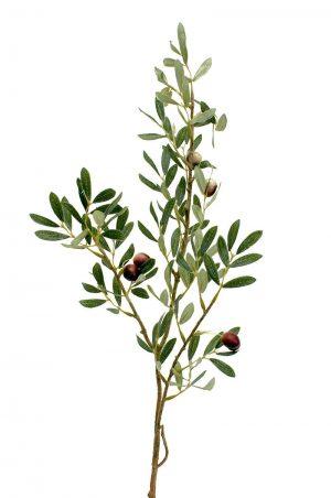 Olivkvist, konstgjord kvist-0