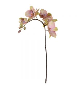 Orkidéstängel, lime lila, konstgjord-0