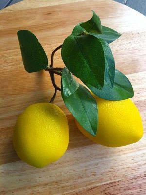Citroner på kvist, konstgjorda-0