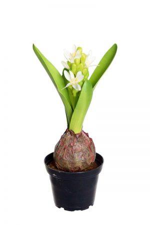 Hyacint i kruka, vit, konstgjord-0