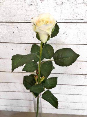 Ros, creme, konstgjord blomma-0