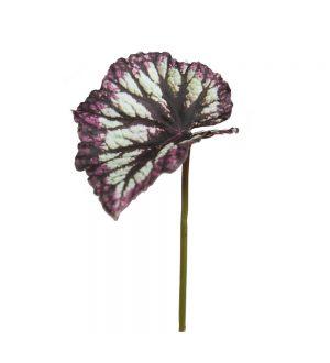 Rexbegonia, blad, konstgjort-0