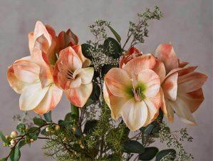 Amaryllis, aprikos, konstgjord-5478