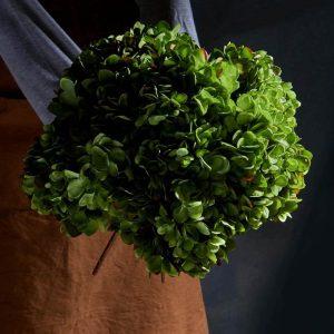 Hortensia, grön, konstgjord blomma-0