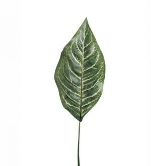 Blad, diffenbachia, konstgjord växt, blomma-0