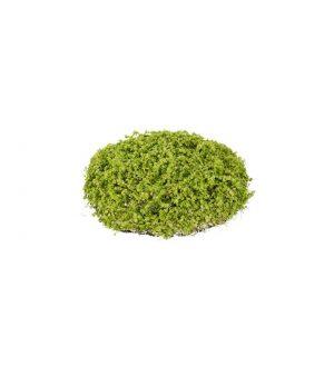 Hemtrevnad, grön, konstgjord-0
