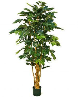 Kaffebuske, konstgjord-0