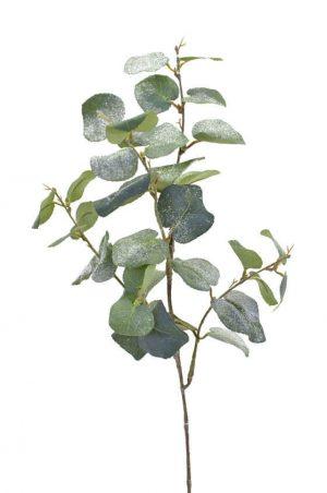 Eucalyptus med is, konstgjord kvist-0