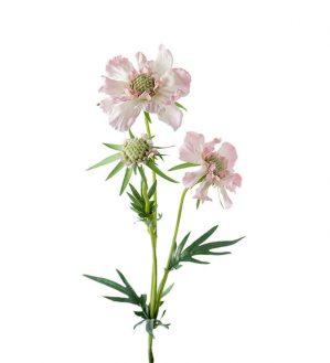 Scabiosa, rosa, konstgjord blomma-0