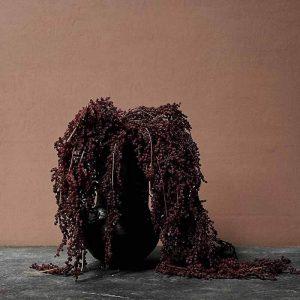 Bärkvist, hängande, konstgjord kvist-0