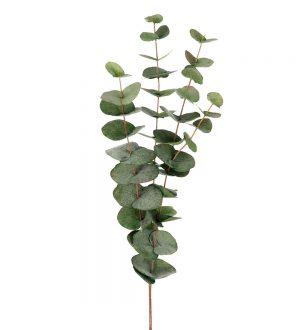 Eucalyptus, grön matt, konstgjord kvist-0