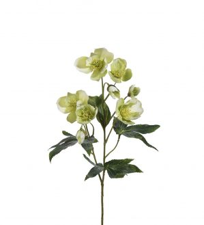 Julros, lime creme, konstgjord blomma-0