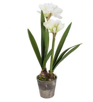 Amaryllis i kruka, vit, konstgjord-0