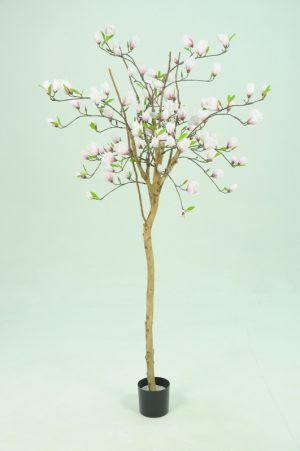Magnolia träd, konstgjort -0