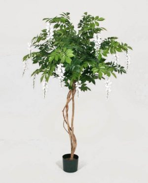 Blåregn, wisteria träd, konstgjort-0