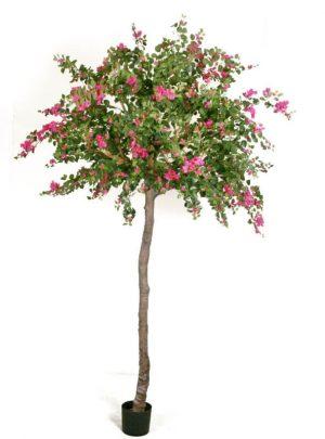 Bougainvillea, konstgjort träd-0