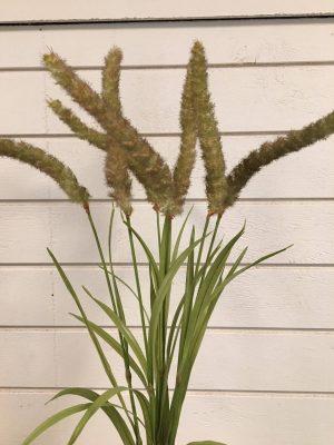 Gräs, mörkt ax, konstgjord växt-0
