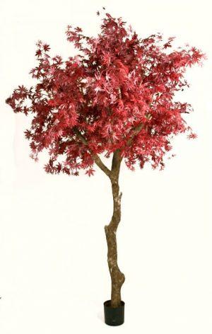 Lönn, vinröd, konstgjort träd-0