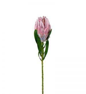 Protea rosa, konstgjord blomma-0