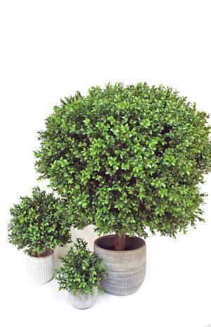 Buxbom på stam i kruka, konstgjord växt, ovalt formad-0