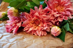 Dahlia, Real touch, rosa, konstgjord blomma-0