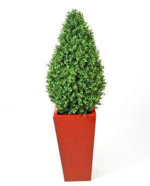 Buxbom, konstgjord växt-0