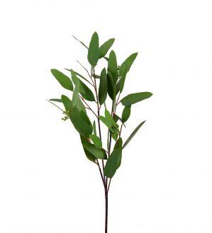 Eucalyptus, Real Touch, konstgjord grön kvist-5813