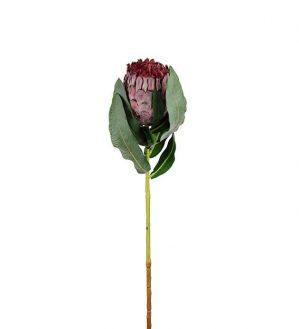 Protea, lila, konstgjord blomma-5986