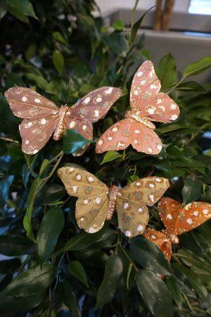 Fjäril, 4-pack, rosa, senapsgul, mörk aprikos, nougat-lila-0
