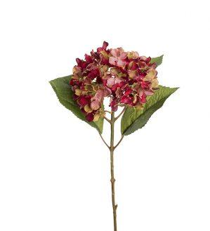 Hortensia, vinröd, konstgjord blomma-5980