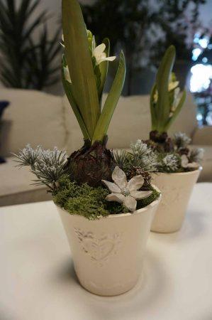 Konstgjord plantering med hyacint på lök-6211