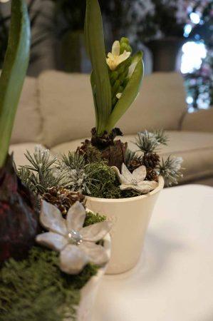 Konstgjord plantering med hyacint på lök-6213