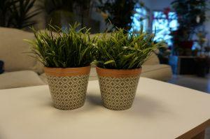 Gräsplanta konstgjord växt-0