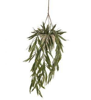 Bladkaktus, Rhipsalis, hängande konstgjord växt-0