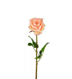 Ros, aprikos, konstgjord blomma-0
