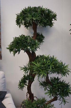 Producarpus träd, konstgjort, 170cm-6411