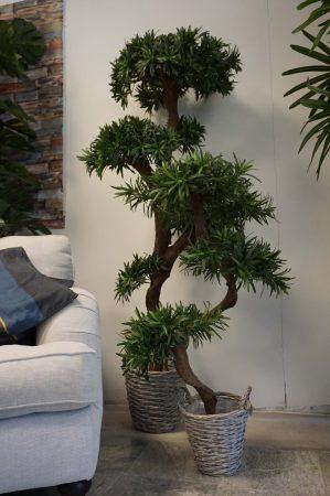 Producarpus träd, konstgjort, 135cm-6409