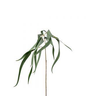 Eucalyptus, 70cm, grön matt, konstgjord kvist-0